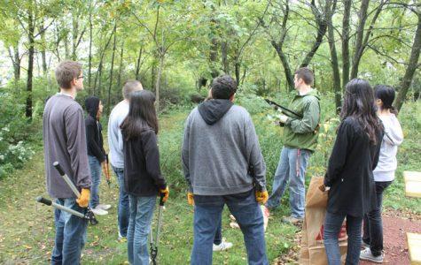 Club members work to remove invasive species in the prairie.