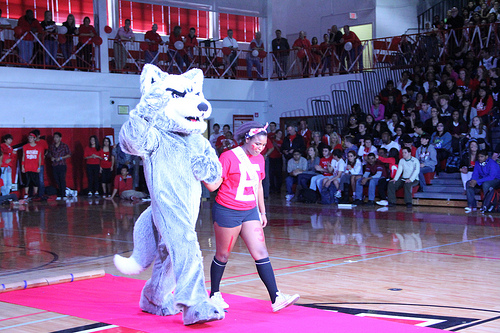 School Mascot Tryouts to be Held Thursday