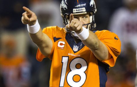 Super Bowl XLVIII Preview