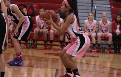 Lady Wolves Lose to Niles North