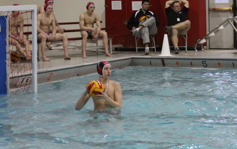 Water Polo Wolves take the Win Against the Wildkits