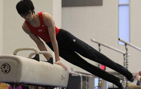 Boys Gymnastics Preview