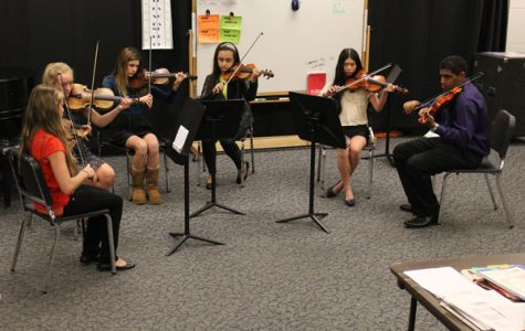 Orchestra Holds Annual Chamber Music Recital