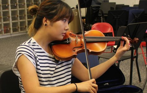 Orchestra to Perform Fall Concert Tonight