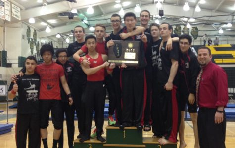 Boys Gymnastics Team Qualifies for State
