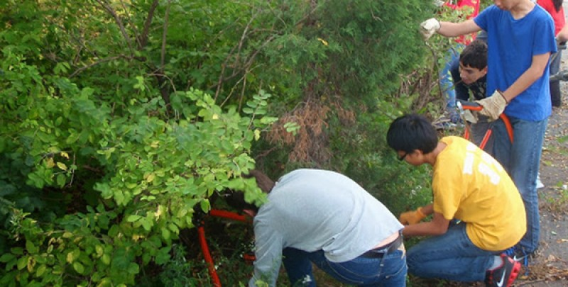 Environmental Service Day to be Held Saturday