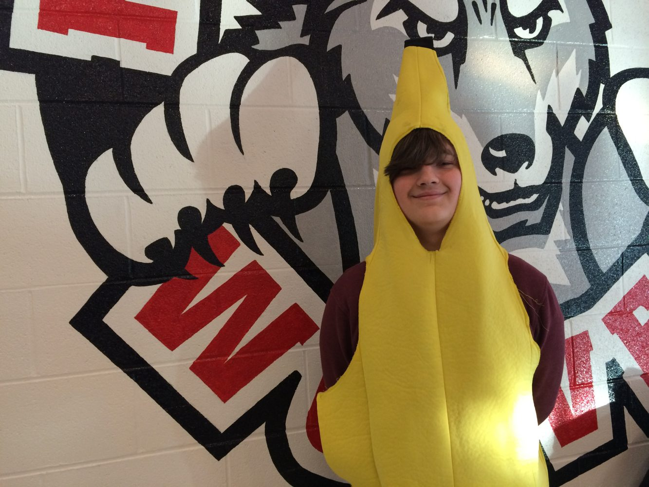 The Adventures of Banana Boy