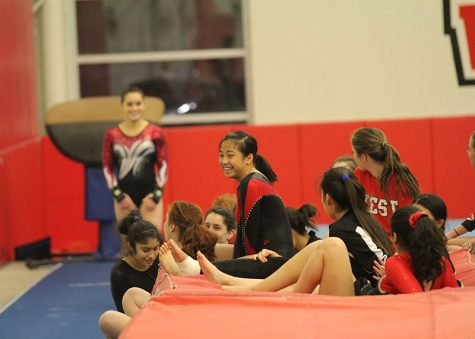 Boys Varsity Gymnastics: Niles West vs Niles North and Glenbrook South Preview