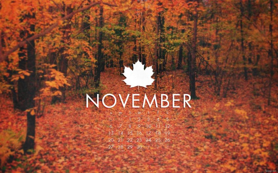 What's Up, November?