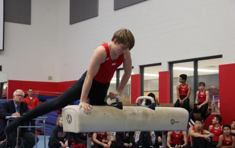 Junior Patrick Greiner begins his routine last year on the pommel horse.