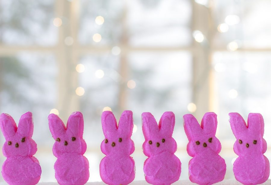 Tis the season for peeps! Get your full serving of marshmallow in the shape of a bunny or a chick this spring.