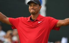 Cats Have Nine Lives: Tiger Woods Makes a Comeback