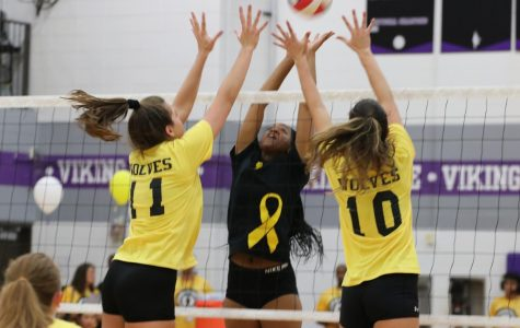 Girls Varsity Volleyball vs. Niles North Preview