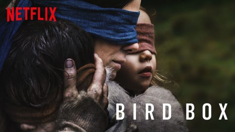 Open Your Eyes and Watch Bird Box