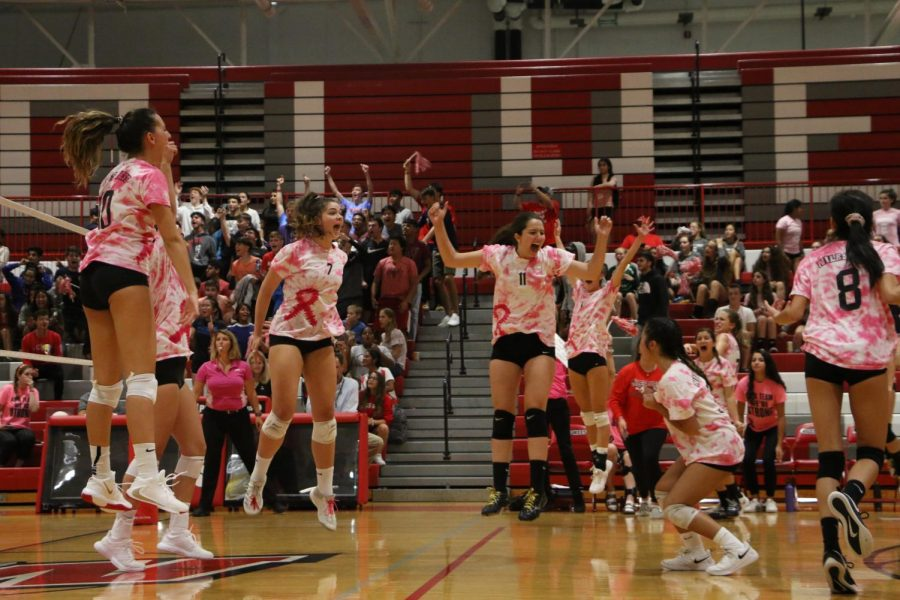 Niles West celebrating the game winning point.