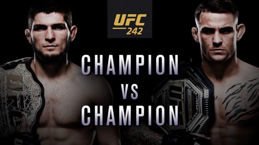 UFC 242 Preview