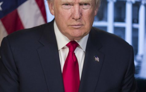 Official Portrait, President Donald J. Trump. (White House photo)  White House bio: https://www.whitehouse.gov/administration/president-trump