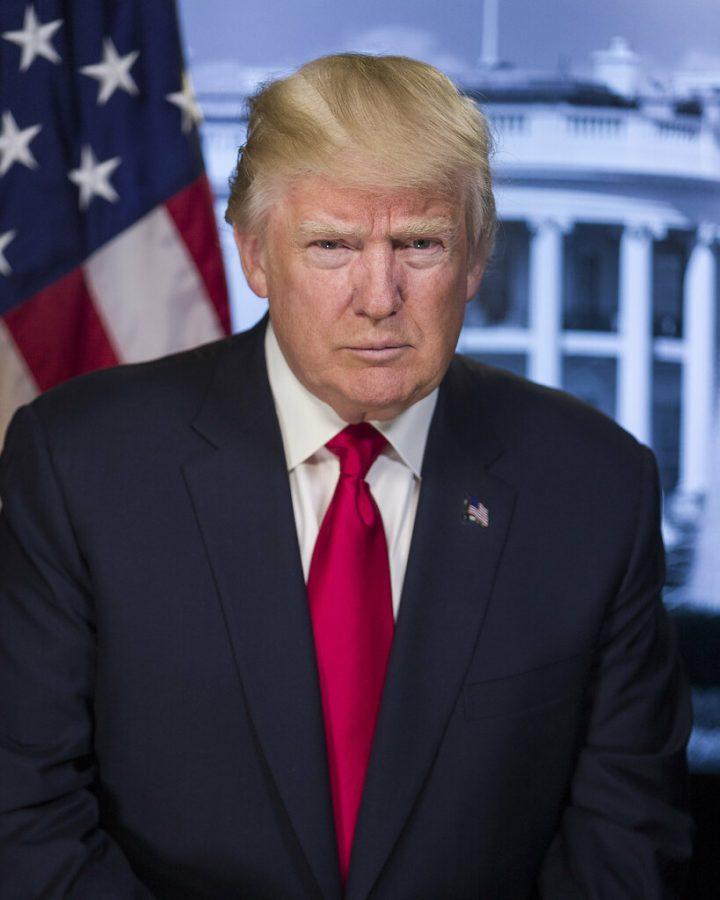 Official+Portrait%2C+President+Donald+J.+Trump.+%28White+House+photo%29++White+House+bio%3A+https%3A%2F%2Fwww.whitehouse.gov%2Fadministration%2Fpresident-trump