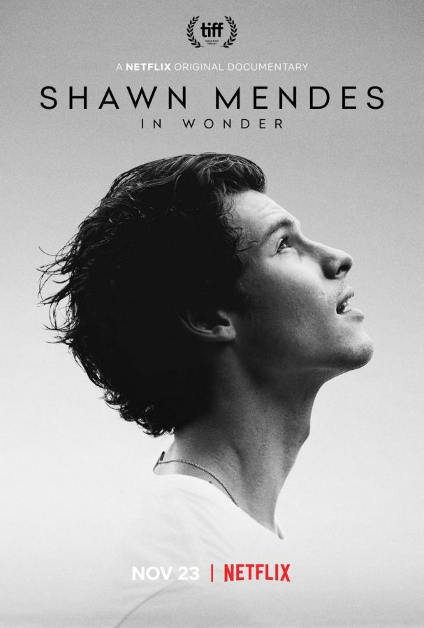 The Netflix documentary poster for 'Shawn Mendes: In Wonder'.