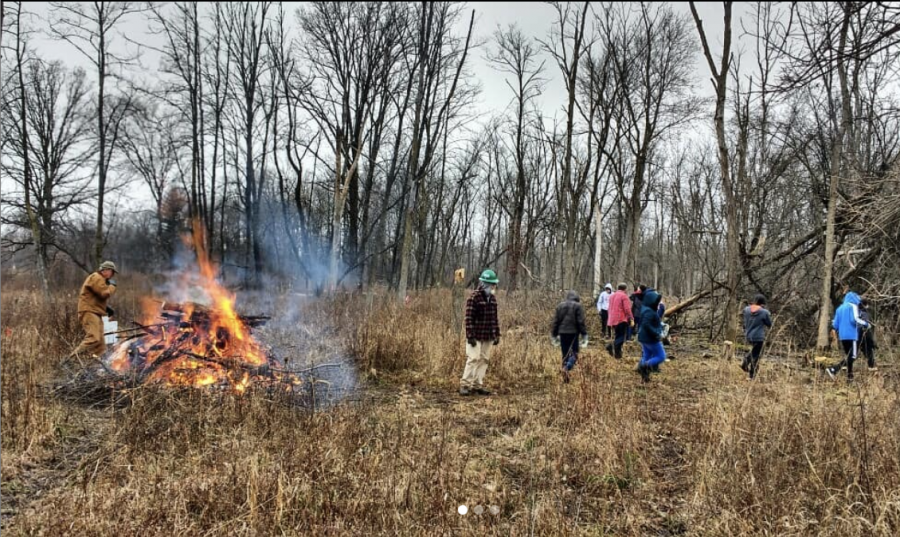 Pre-Covid picture of NARWHALS members restoring Blue Star Woods.