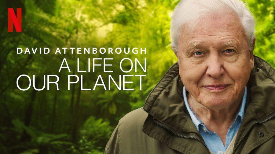 David Attenborough: The Voice of Nature